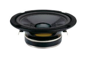 CS160  Subwoofer  Ciare
